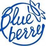 blueberry_o0